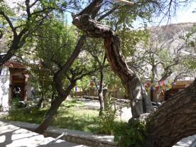 Premises of the Alchi Monastery