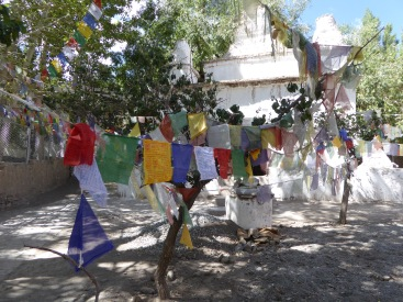 Tibetan prayers at Alchi Village