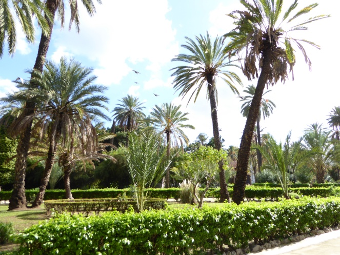 Italy - Sicily - Palermo - Villa Bonanni park ''